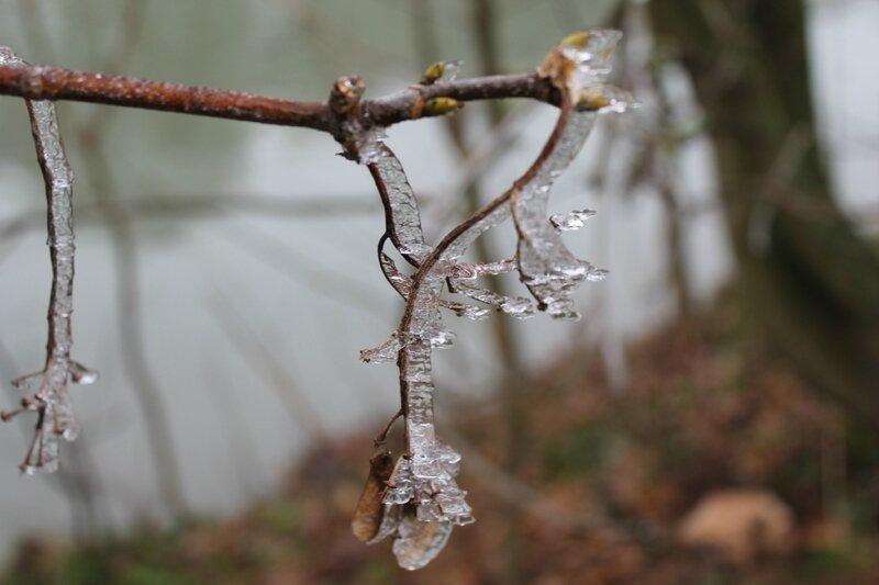 cadre numérique hiver (84)