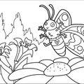 papillon-encrage