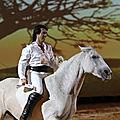 equestria7
