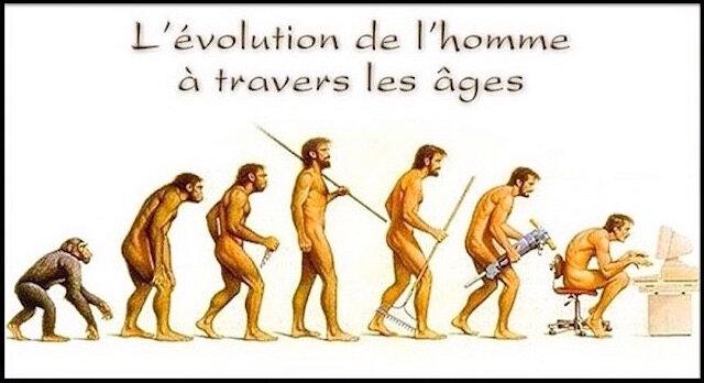 evolution espece humaine 3