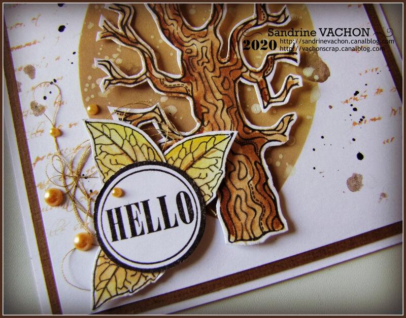 SANDRINE VACHON 657 PCC (3)