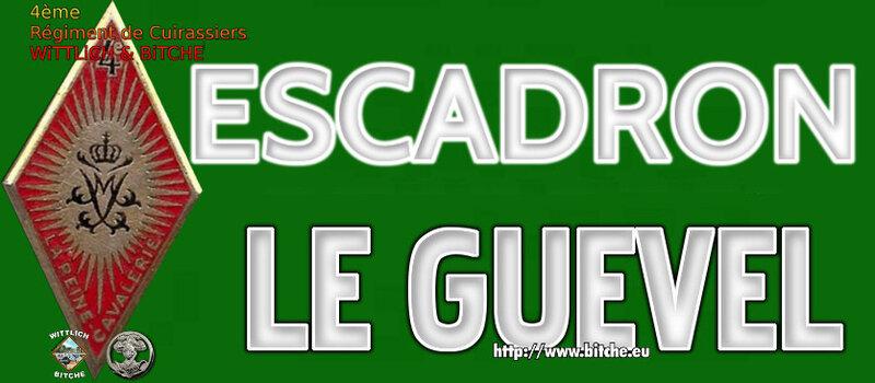 - PANNEAU d' ESCADRON CAPiTAiNE LE GUEVEL