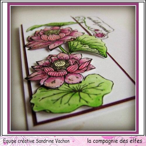 Carte fleurie UNE BELLE JOURNEE dt LCDE (3)