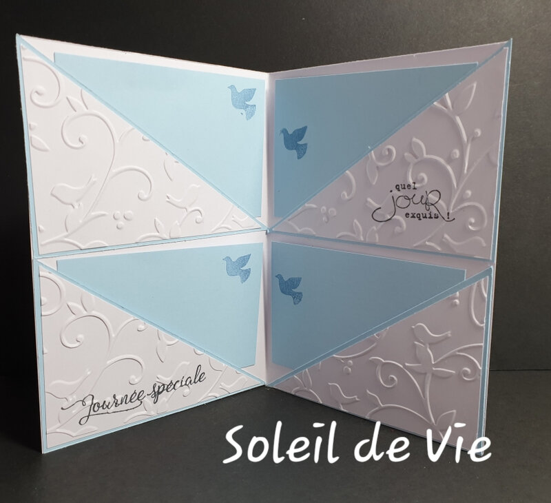 201903-SoleildeVie-StampinUp-QSMS-papierciseauxetcie-1