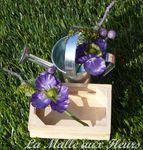 jds1 violet