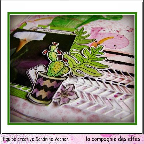 Sandrine VACHON 11 juin dt LCDE (4)