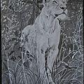 142 - la lionne,