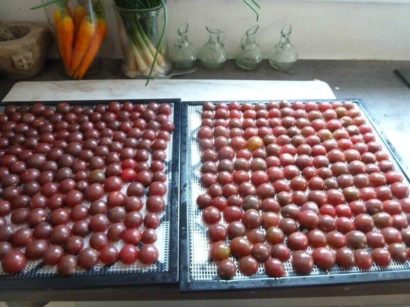 30-tomates cerises chocolat (2)