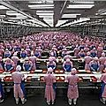 apple ouvrier exploitation chine steve jobs foxconn