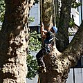 IMG_0720a