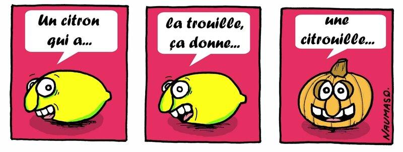 Trsfm_citrouille