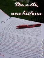 DES MOTS UNE HISTOIRE