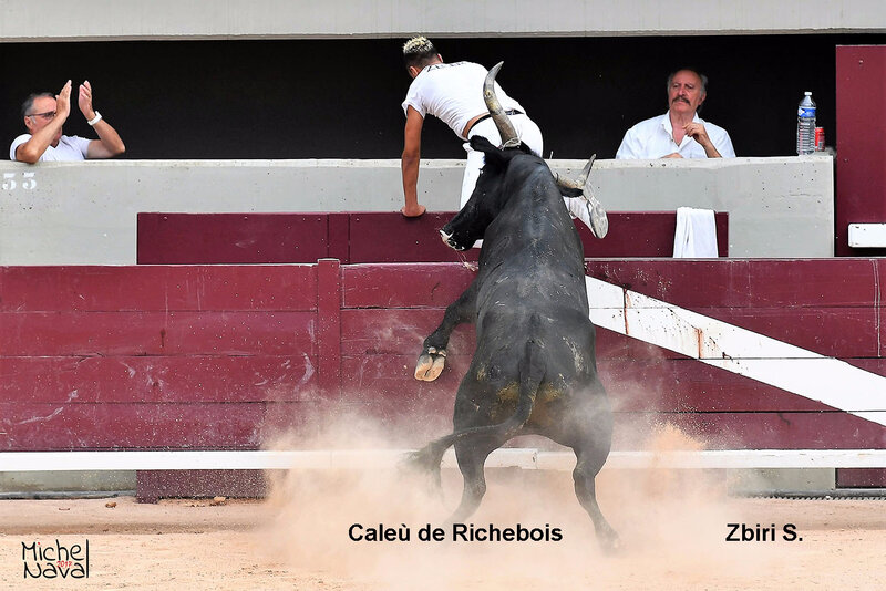 ISTRES 12
