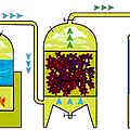 Fabrication huiles essentielles vapeur
