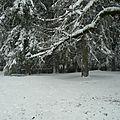 Foncine sous la neige (Jura)