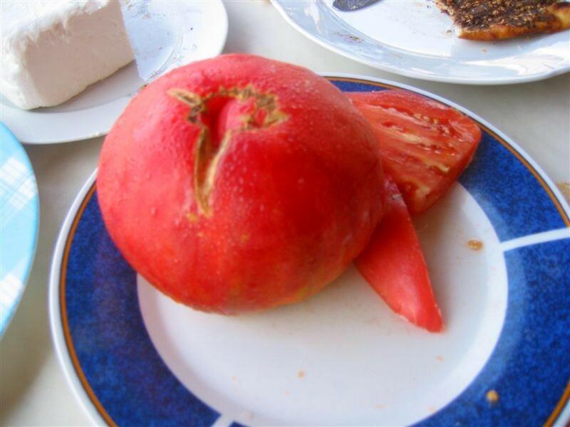 ça c'est une tomate.