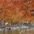 Frimas d'automne