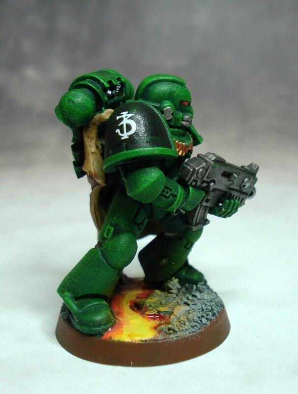 Salamanders03g