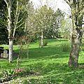 Jardin nouveau