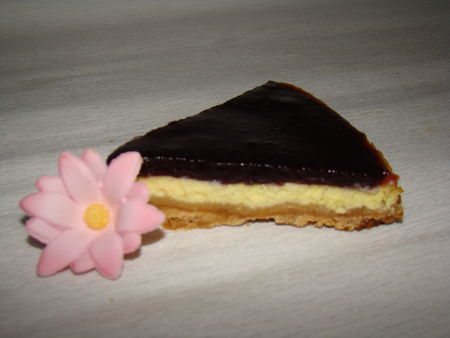 cheesecake_coquelicot_mures_091