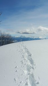 1331- Plateau de Sornin - Raquettes Vercors - 19032013 (47)