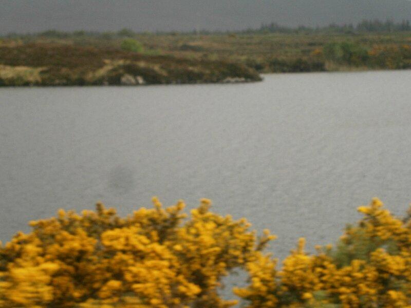 Irlande mai2014 057