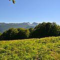 Un jour en forêts d'Aspe Barétous, le 18 juillet 2012...