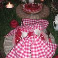 table picnic 008