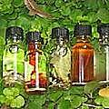 Les parfums des grandes traditions des rituels vaudou hohoo
