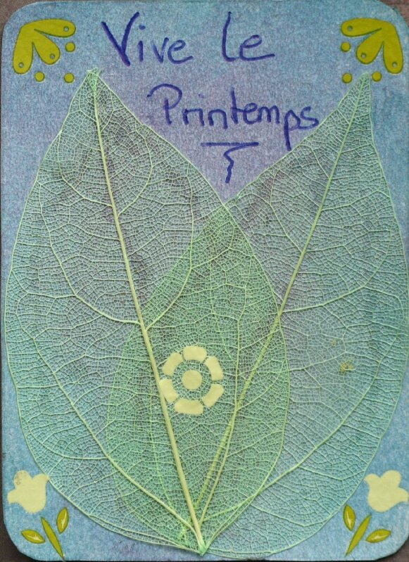 ATC05_le printemps_by Laetitia_avril 08_modifié-1