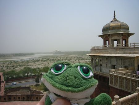 Photo de brOOky au Fort Rouge d'Agra. Au fond le Taj Mahal