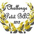 Challenge petit bac 2012 : 1er recap'!