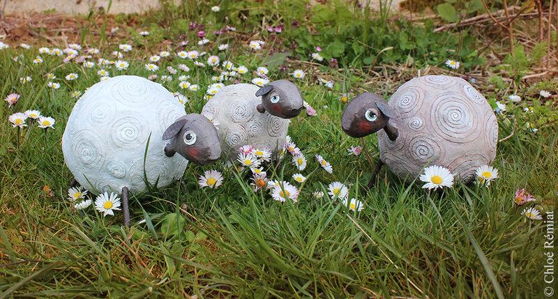 3 moutons dans les pâquerettes 28 mars 2019