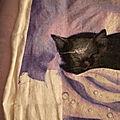 Lilac dreams 18