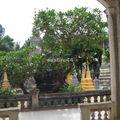 siem reap_pagode_02