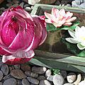 Lotus en oignon