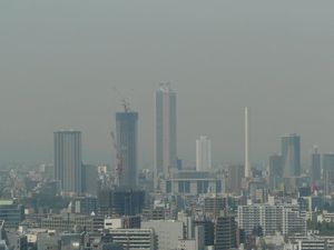 Canalblog_Tokyo03_13_Avril_2010_040