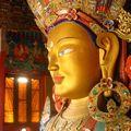 Tikse - Maitreya (2)