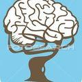 cerveau-arbre_~nje0004