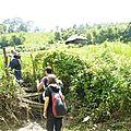 treck marche P1190418