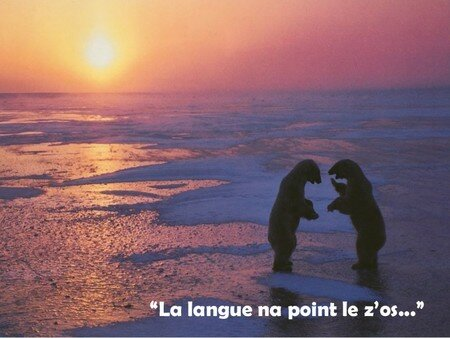 La_langue_na_point_le_zo