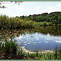 Lac Mimizan 05051516
