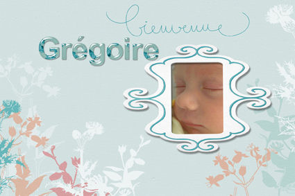 page 00 couverture album gregoire 01