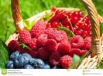 fruit-d-été-32808395