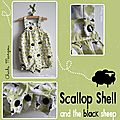 Scalop shell and the black sheep