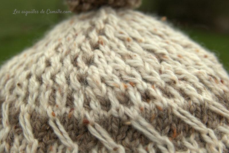ensemble scale bonnet2