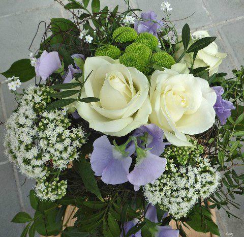 fleurs de delano