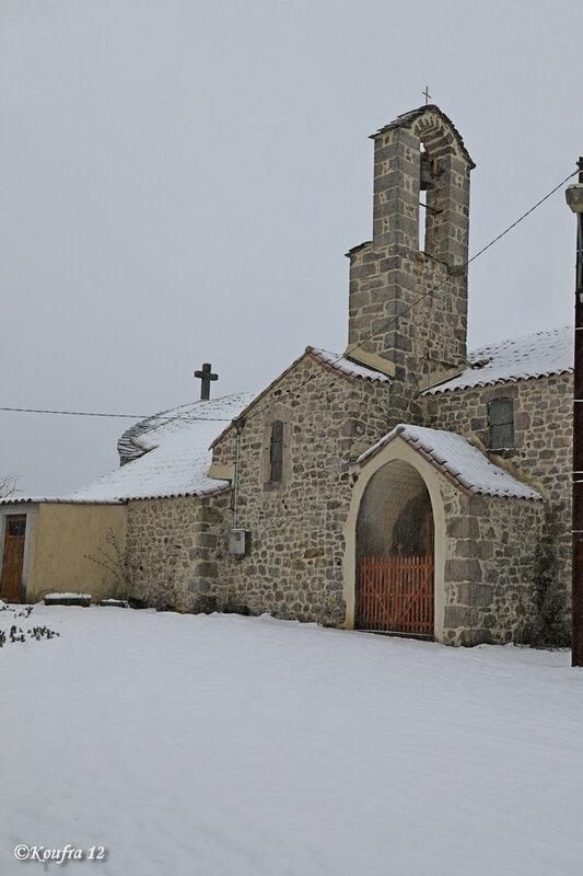 Photos JMP©Koufra 12 - Cornus - Neige - 30012019 - 0058