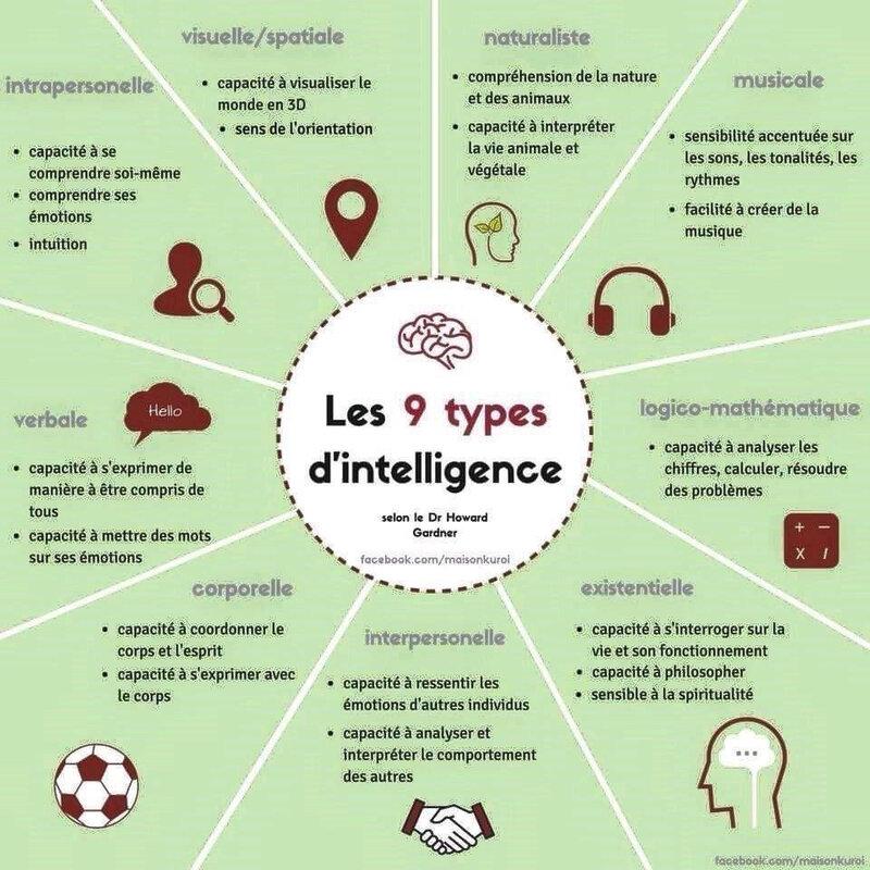 9intelligences