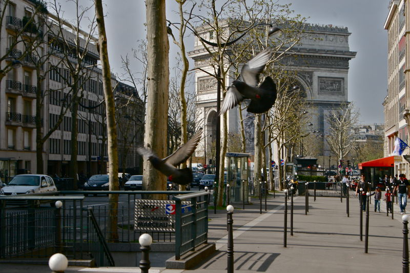 Impression parisienne.
